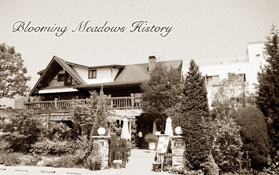 Blooming Meadows History